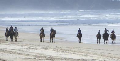 Horse Riding Byron Bay Beach Ride