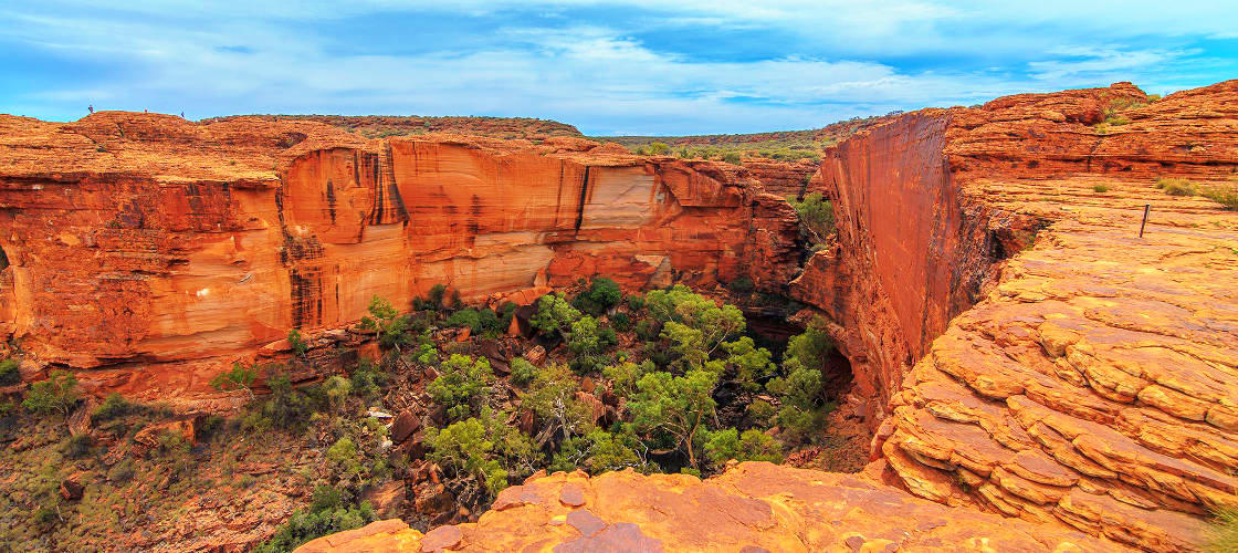 Palm Valley and 4WD Safari Tour