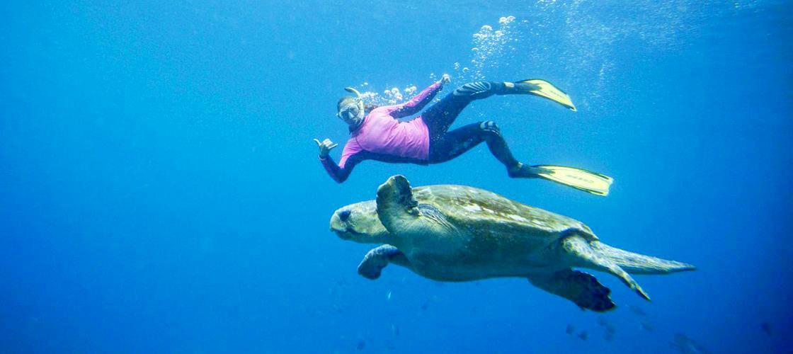 Byron Bay Snorkelling Tours