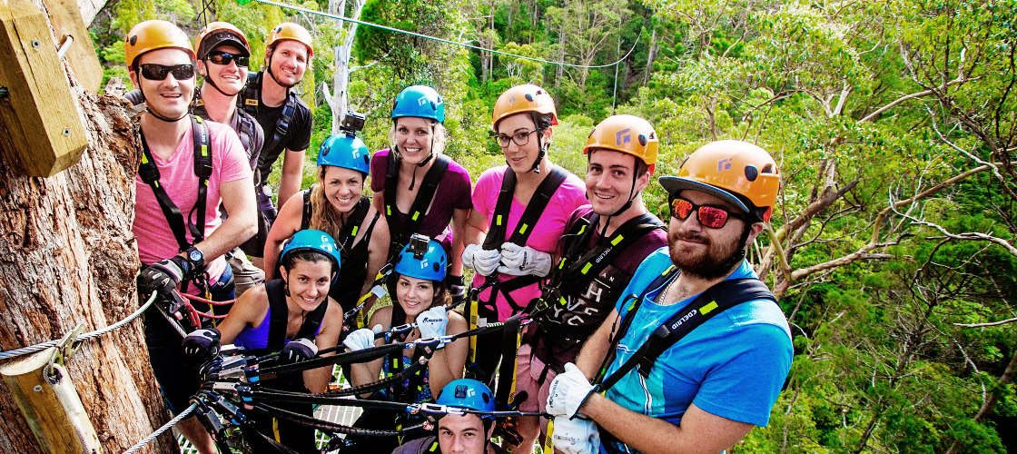 Gold Coast Hinterland Zip Line Tour with 4WD Experience