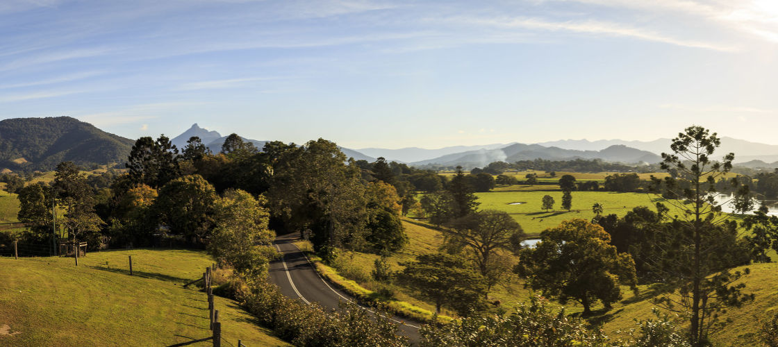 Byron Bay Hinterland Day Tour