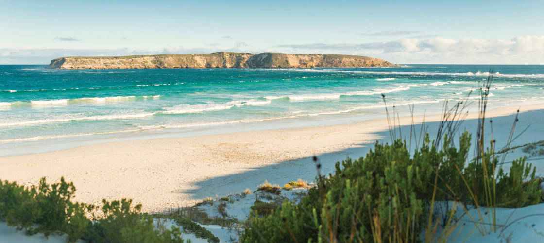 Coffin Bay Day Tour from Port Lincoln including Wine Tasting and Gourmet Lunch