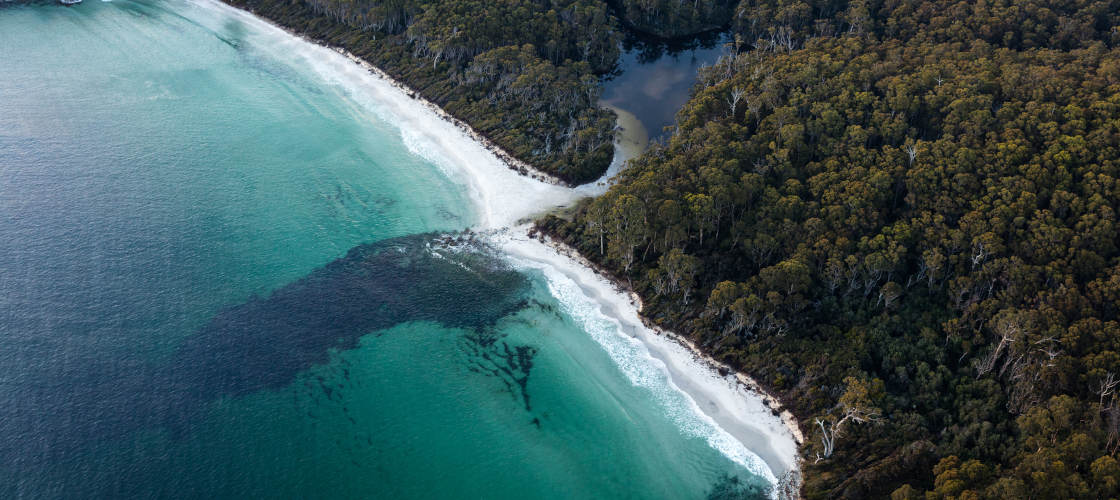 Sea Cliffs and Convicts 15 Minute Helicopter Flight