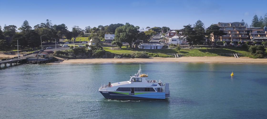 French Island & Phillip Island Wildlife Expedition