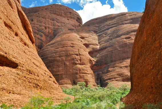 Red Centre 5 day Walk