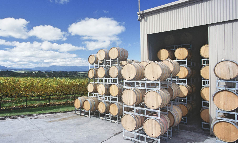 Yarra Valley Private Car Winery Tour with Chocolate Tasting and Lunch