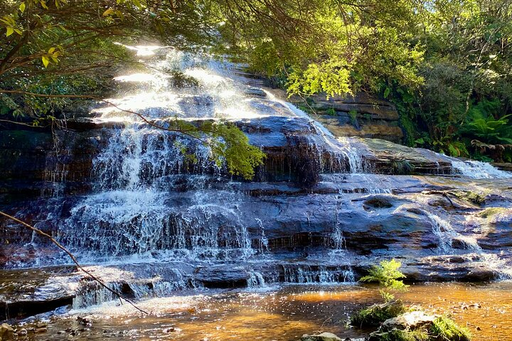 Alternative Yarra Valley Wine Tasting Tour Departing from Melbourne