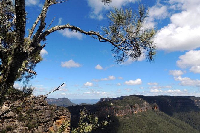 Blue Mountains Small-Group Insider Tour from Sydney