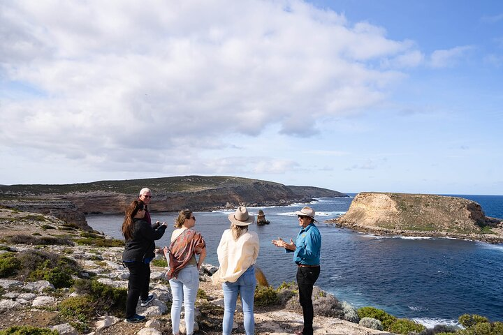 Small-Group Phillip Island Day Trip from Melbourne with Penguin Plus Viewing