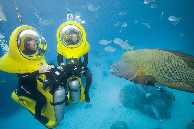Great Barrier Reef Adventure from Cairns