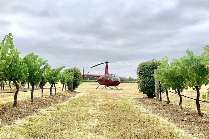 Private Helicopter Flight to Hunter Valley with a la carte Lunch - For 2