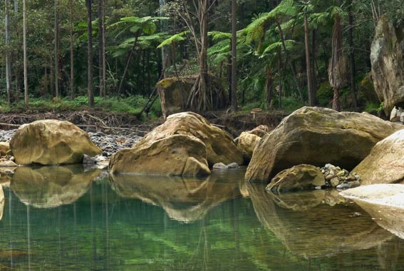 7 Day Carnarvon Gorge with Bunya Mountains and Cania Gorge