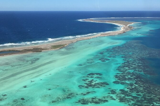 Pink Lake + Abrolhos Islands Nature Tour