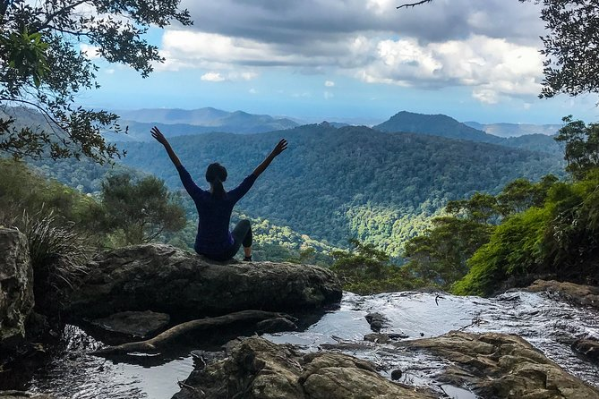 Springbrook and Mt Tamborine Adventure Tour - Bring the Kids!!