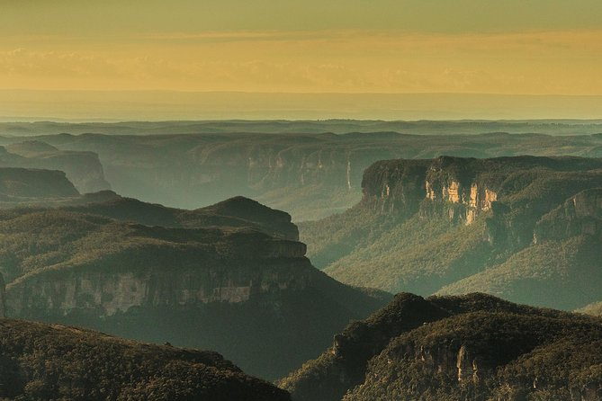 Sunset Blue Mountains Wilderness & Wildlife Tour (Without the Crowds)