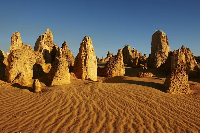 Pinnacles Day Trip from Perth Including Yanchep National Park