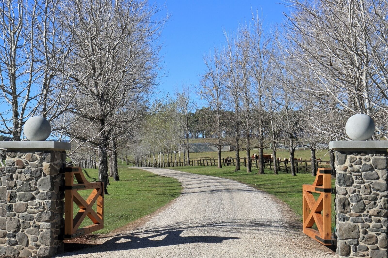 The Ultimate Farm Experience.great for Families.bring Your own Dirt Bikes/horses