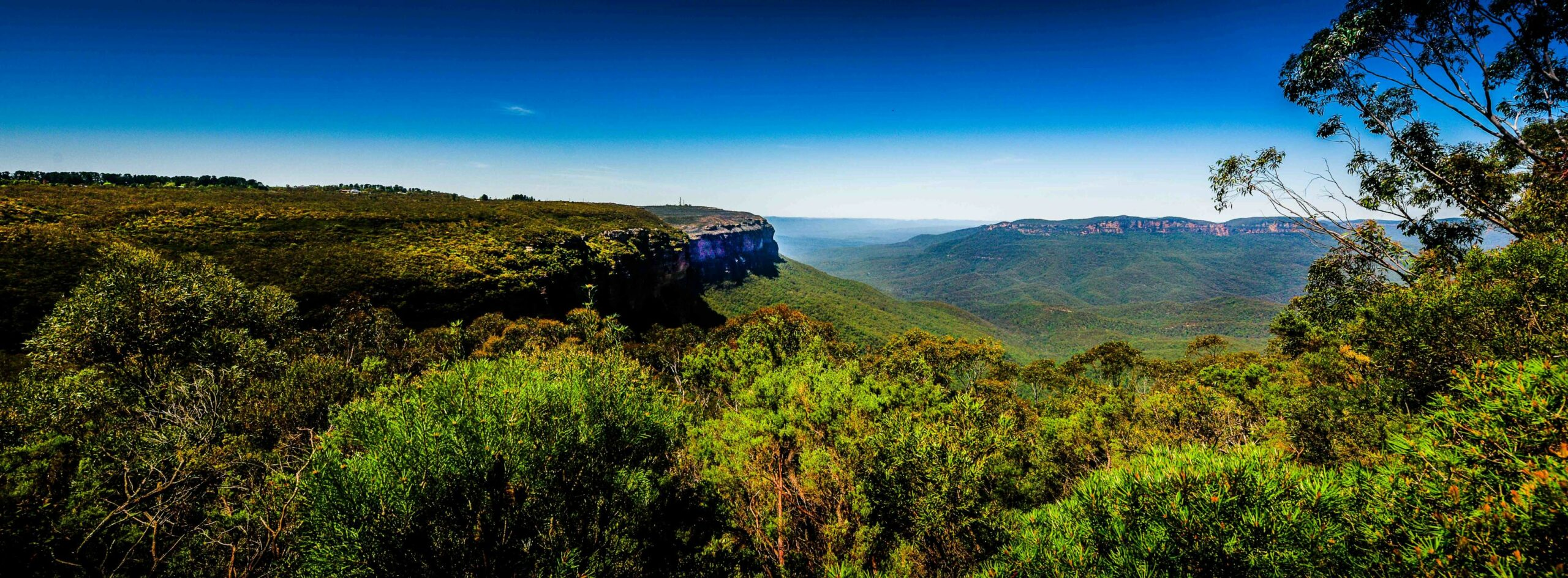 Blue Mountains Luxury Private Charter with Echoes Lunch