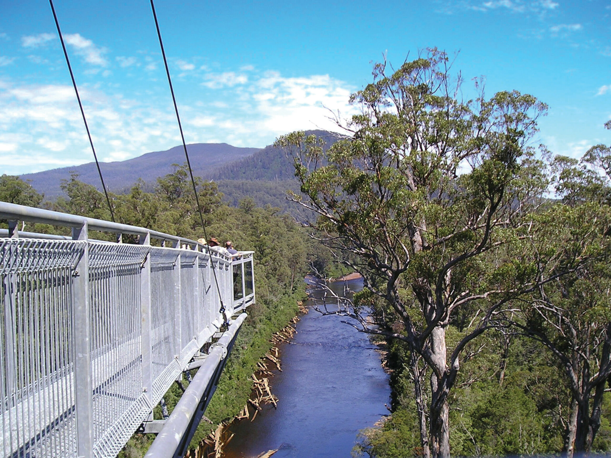 Mt Wellington, Huon Valley and Tahune AirWalk (Optional: Bonorong Wildlife Sanctuary)