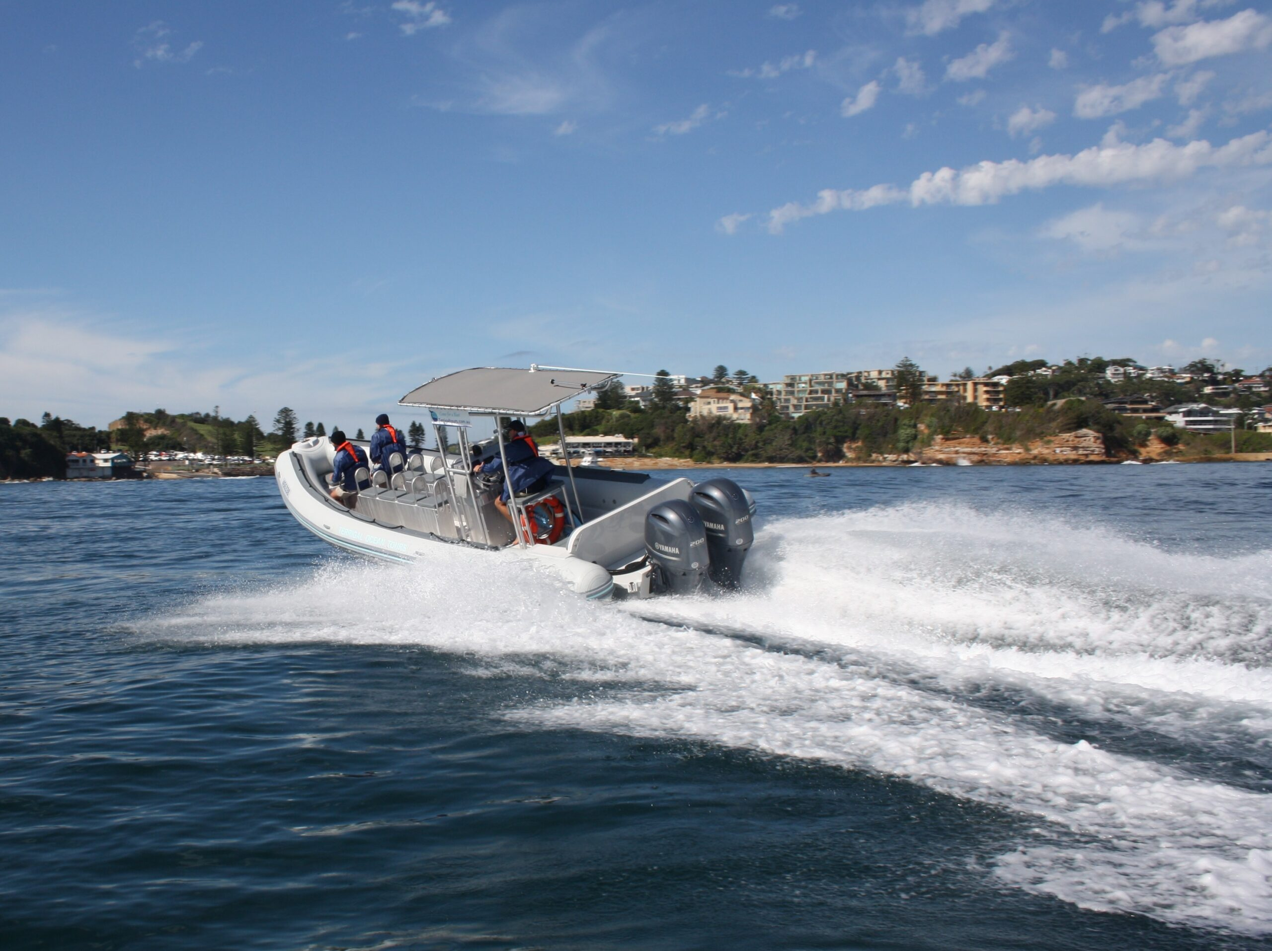 Whale Watching Terrigal