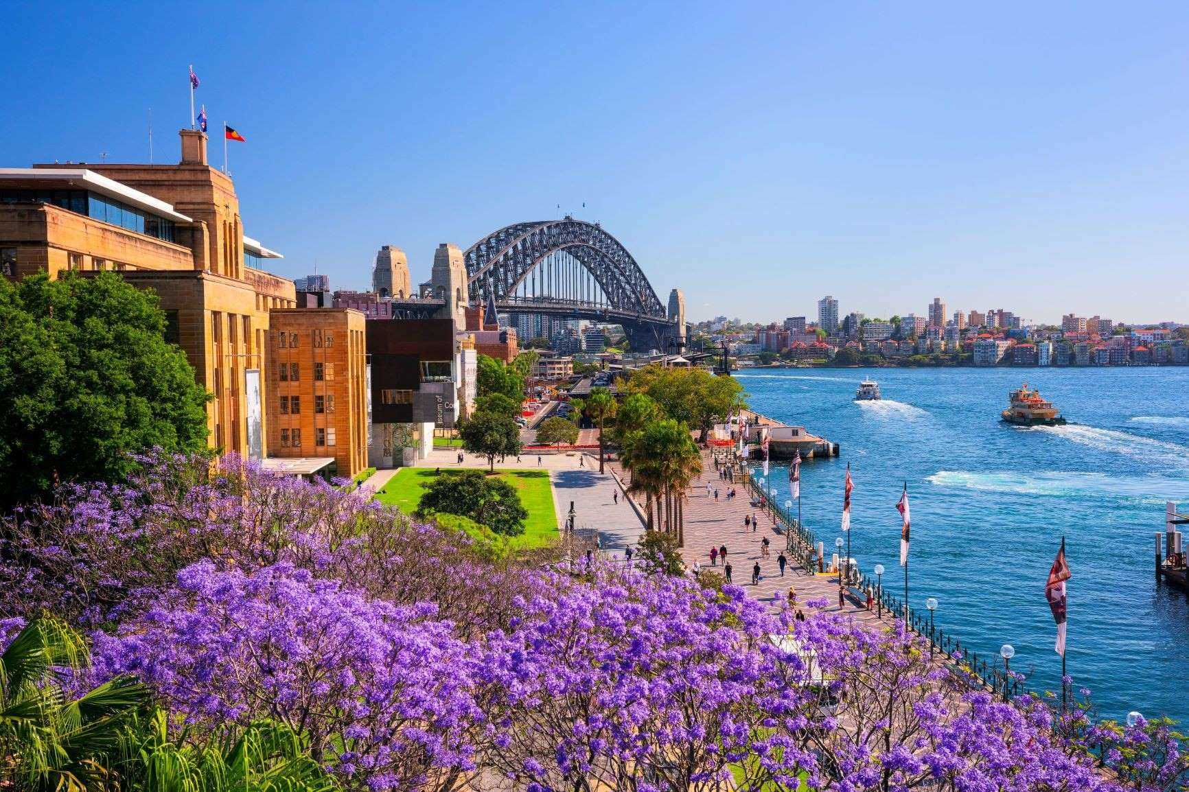 Iconic Sydney Eastern Suburbs & Beaches Private Charter