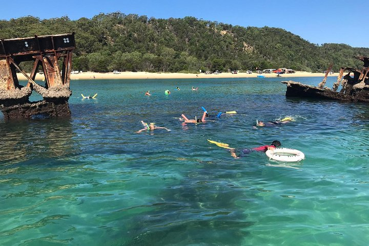 All Inclusive Dolphin and Tangalooma Wrecks Cruise