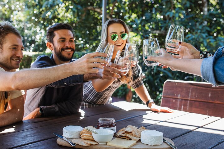 Full-day Wine-Tasting and Tamborine Mountain Tour with Lunch