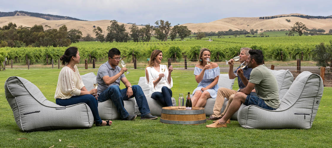 Vineyard Tour and Wine Tasting Private Group Experience