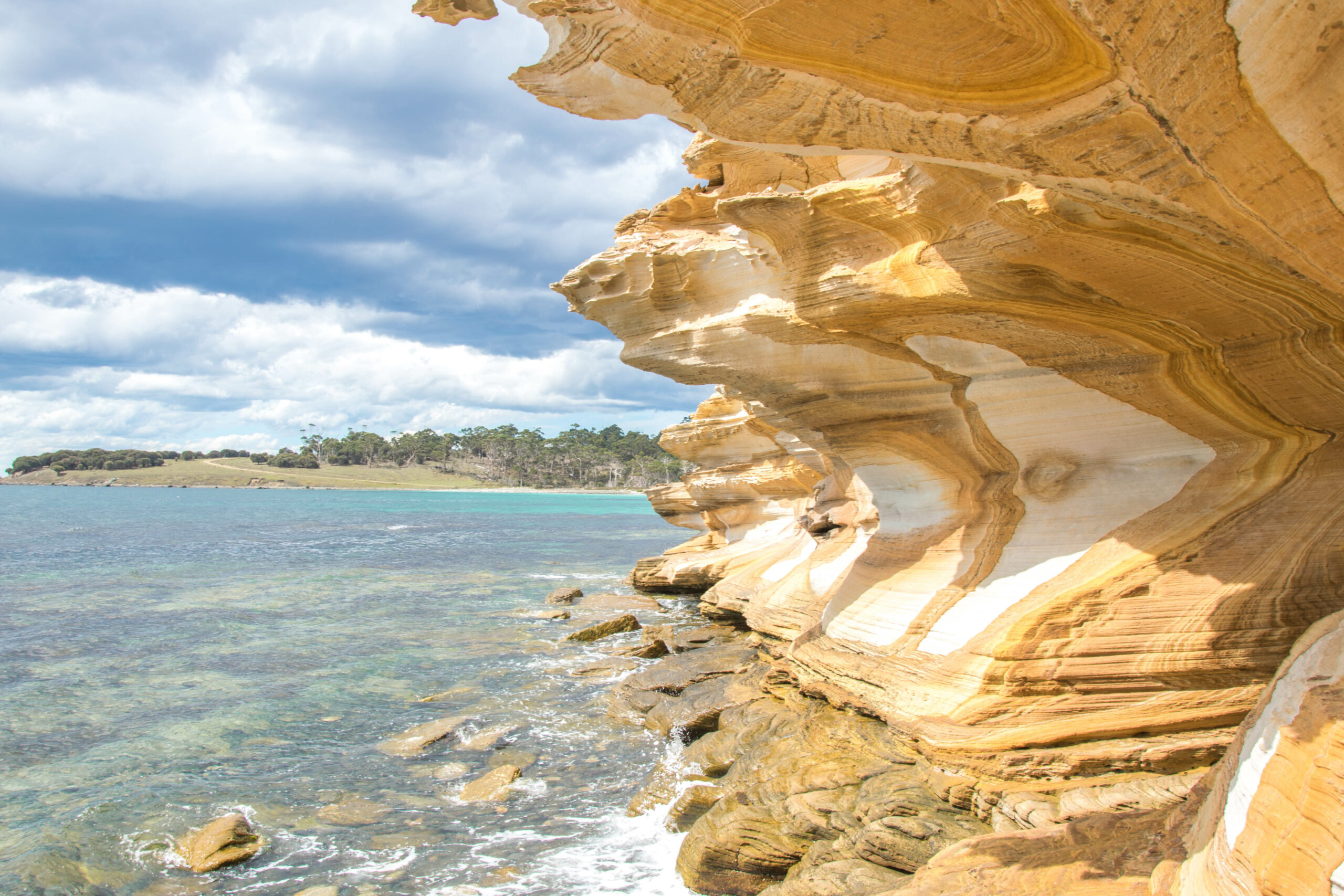 2 Day: Mount Field National Park and Maria Island National Park